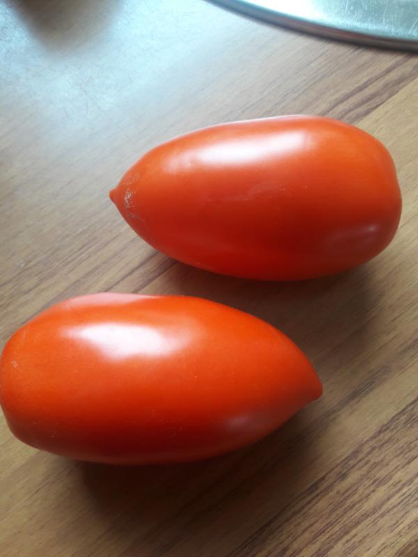 Biologische  roma pruim tomaten kist a 6 kg