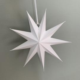 Papieren kerstster wit