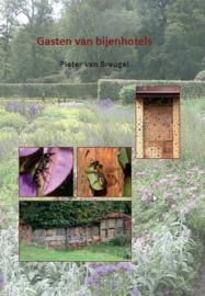 Gasten van bijenhotels