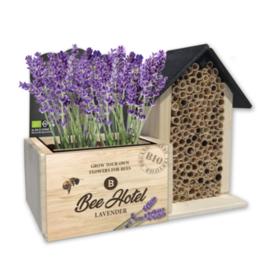Bee hotel met  BIO  bloemen