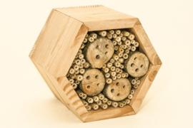 Honingraatmodel