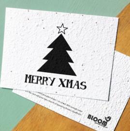 """Kerst bloeikaart """"Merry xmas"""""""