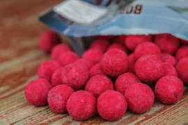 Bloodworm 18mm