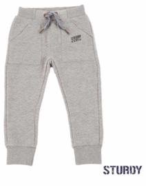 Sturdy joggingbroek Grey Melange