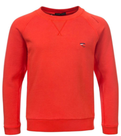 Common People Sweater Tiger