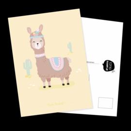 Ansichtkaart Lama