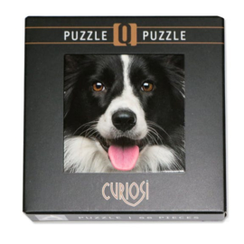Curiosi Q-puzzel (extra moeilijk)  - Hond (66 stukjes)