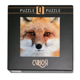 Curiosi Q-puzzel (extra moeilijk)  - Vos (66 stukjes)