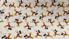 Mickey Mouse tricot lichte achtergrond