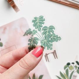Plant sticker  -Monstera-