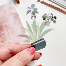Plant sticker  -Sansevieria-