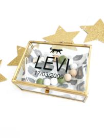 Herinneringen box - Levi