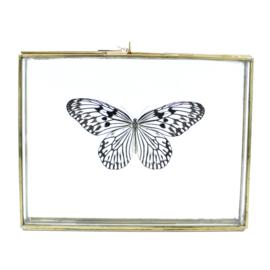 Gouden doosje met witte  vlinder