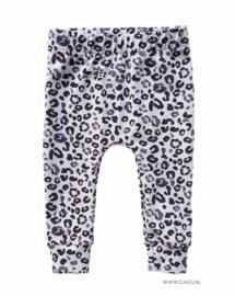 Grey Leopard Harem