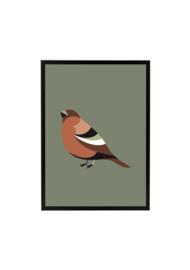 Vogel olijfgroen