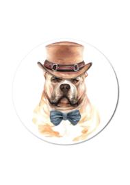 BULL DOG (per 5 stuks)