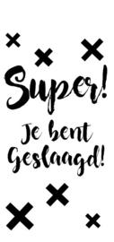 SUPER! JE BENT GESLAAGD! 6 STUKS