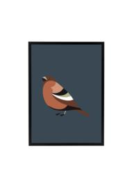 Vogel donkerblauw