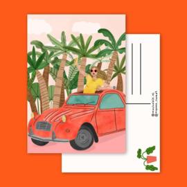 Kaart Auto Vakantie