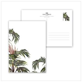 Kaart Jungle Palm