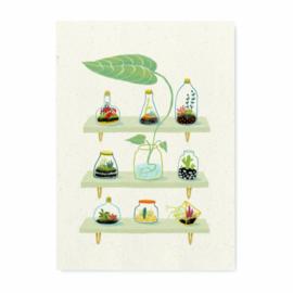 Miniprint Green Worlds A5