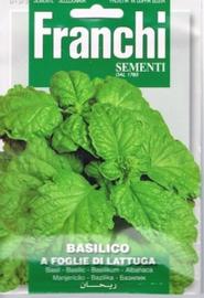 Basilicum Slabladig - Basilico a foglie di lattuga