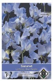 Lathyrus Blue Ripple  Siererwt Pronkboon Geurerwt