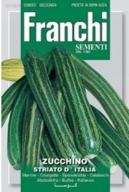 Courgette - Zucchino striato d'Italia