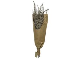 Bundel met gedroogd gras - witte was