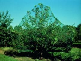 Tuinnet Groen 6 x6 maaswijdte