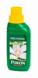 Orchidee Voeding