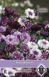 Centaurea Classic Magic  Korenbloem