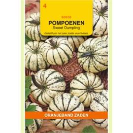 Pompoen Sweet Dumpling