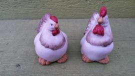 Hen en Haan