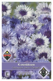 Centaurea Classic Fantastic  Korenbloem