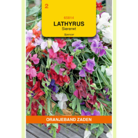 Lathyrus Siererwt Spencer Gemengd