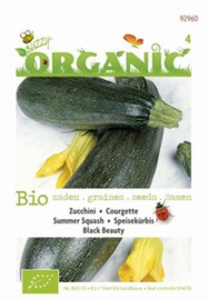 Organic Bio Courgette Black Beauty