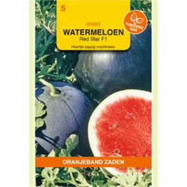 Watermeloen Red Star