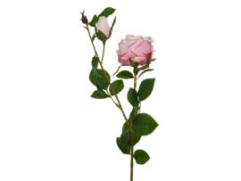 Roos van polyester
