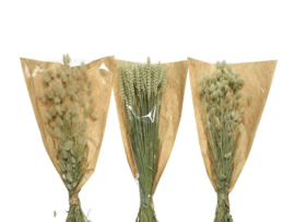 Tarwe op stam - 3 assorti