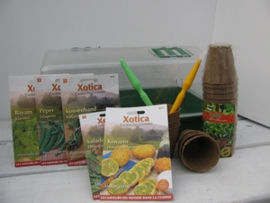 Exotisch groentepakket