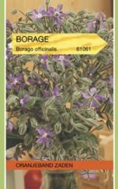 Komkommerkruid - Borage
