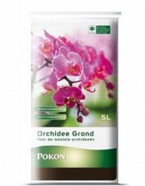 Orchideeëngrond