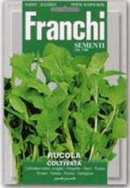 Rucola - Rucola coltivata