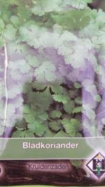 Bladkoriander