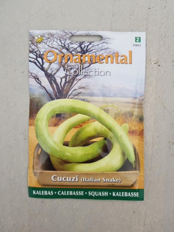 Kalebas - Cucuzi (Italian Snake)