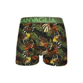 "3x Gianvaglia Heren Boxers ""Leaves"""