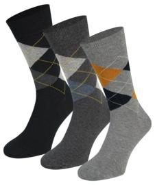 3x Teckel Sokken Blokjes