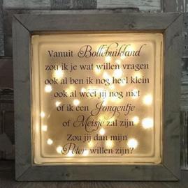 Glasblok met verlichting peter meter peetoom peettante - Prijs vanaf