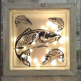 Glasblok met verlichting Koi karper - Prijs vanaf